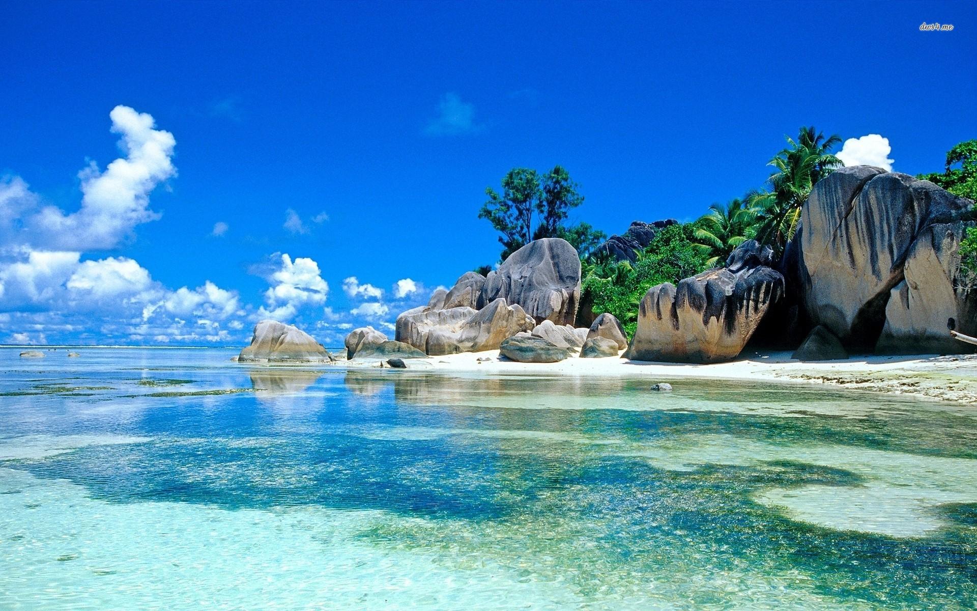 About Seychelles Falcon Safaris Tour Operator Destination Management Company